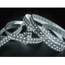 3528smd 240led/m ledstrip(double rows)